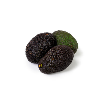Picture of AVOCADO CL MOGEN 22/26ST