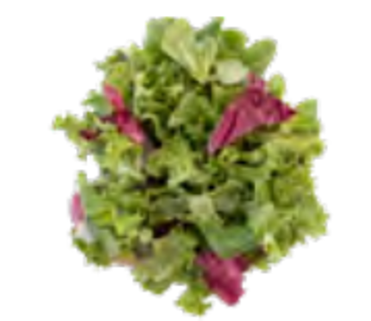 Picture of SALLAD PROVENCE 4X500G