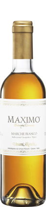 Picture of MAXIMO BOTRYTIS 12X37,5